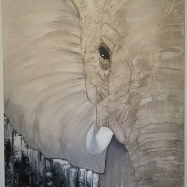 Olifant #1